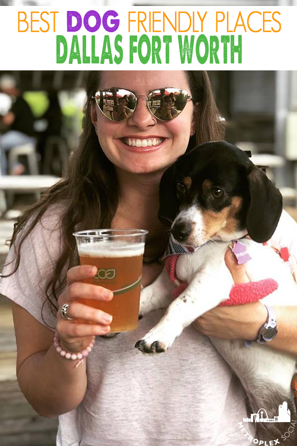 You Can Take Your Dog With You To These Local Spots In