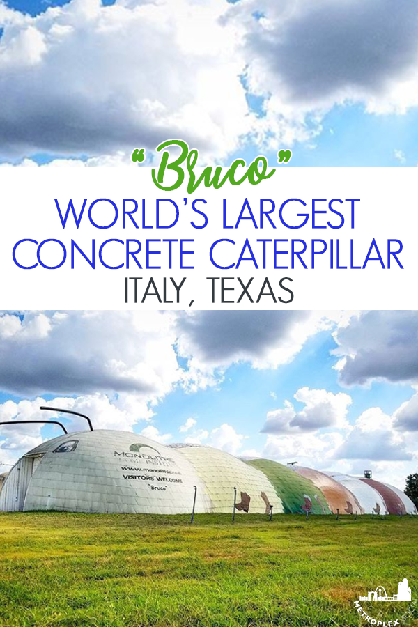 MONOLITHIC DOME INDUSTRIES ITALY TEXAS GIANT CATERPILLAR 2