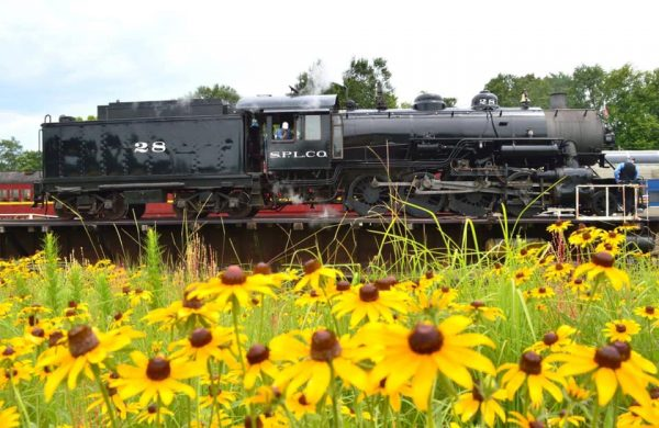 texas state railroad wildflowers