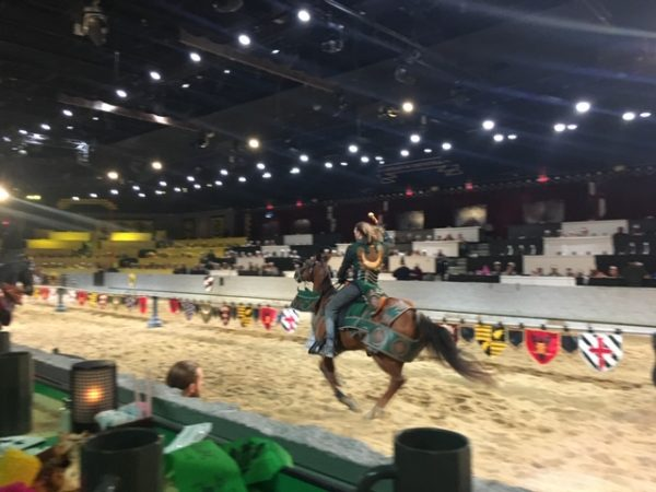 medieval times things to do in dallas