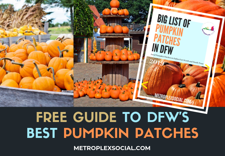 dfw guide best pumpkin patches list