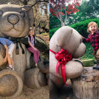 Teddy bear park in Dallas
