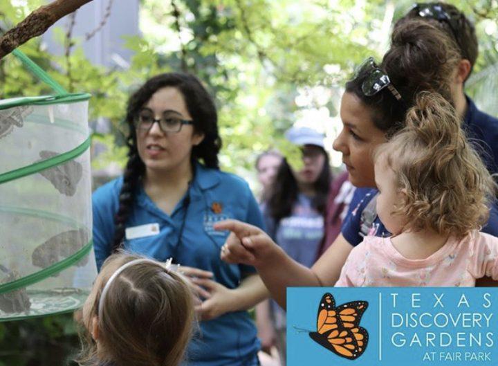 Texas discovery gardens butterfly garden in Dallas