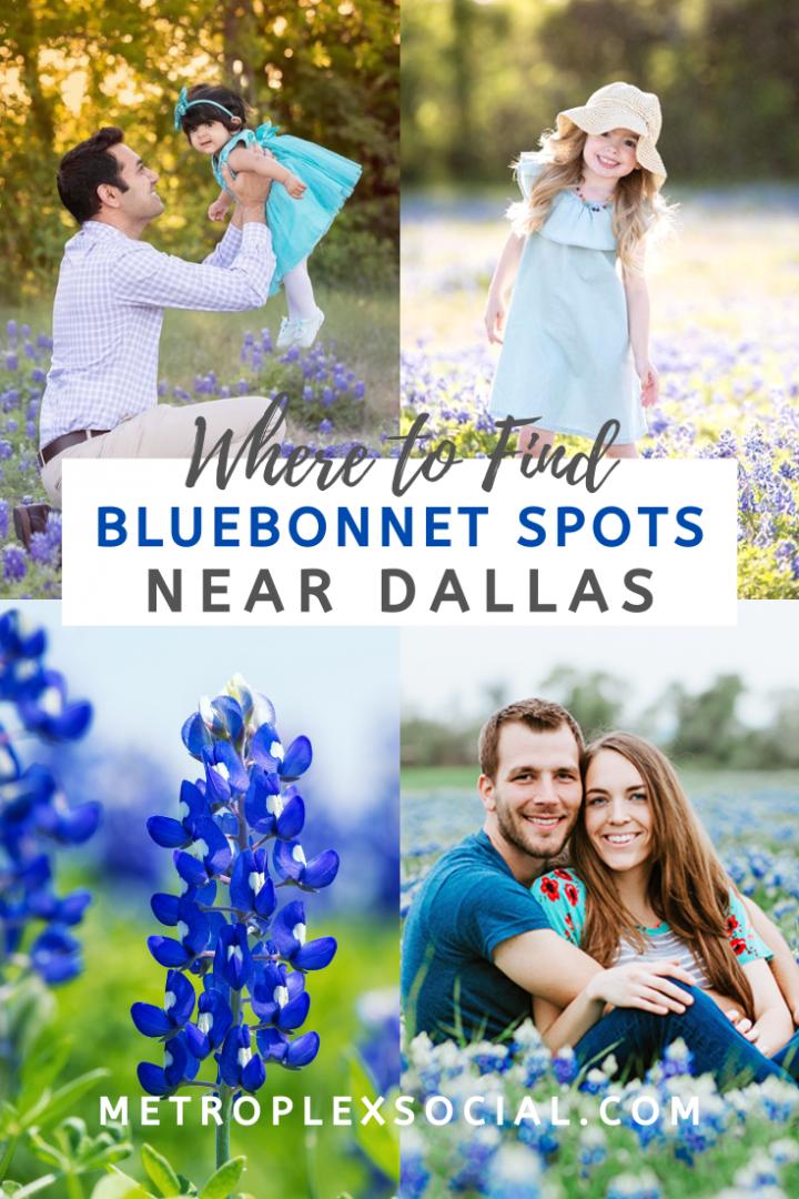 best dfw bluebonnet spots photo locations