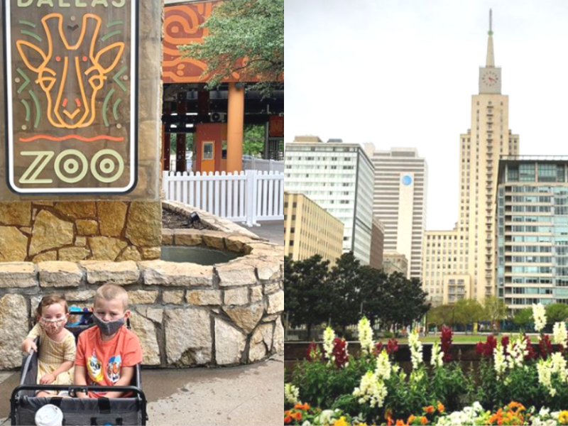 zoos-botanical-gardens-nature-parks-reopening-dallas-fort-worth-covid